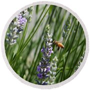 Bee In Lavender Round Beach Towel
