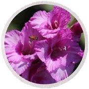 Bee In Pink Gladiolus Round Beach Towel