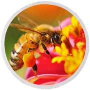 Bee Laden With Pollen 2 By Kaye Menner Round Beach Towel