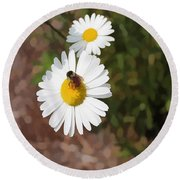 Bee On A Daisy Round Beach Towel