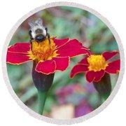 Bee On A Marigold 2 Round Beach Towel