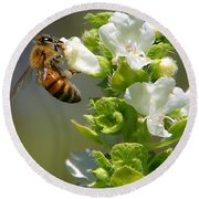 Bee On Basil Round Beach Towel