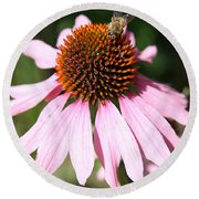 Bee On Coneflower Round Beach Towel