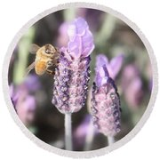 Bee On Lavender Square Round Beach Towel