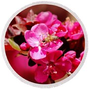 Bee On Pink Blossoms 031015ab Round Beach Towel