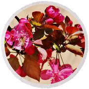 Bee On Pink Blossoms 031015ac Round Beach Towel