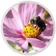 Bee On Pink Cosmos Round Beach Towel