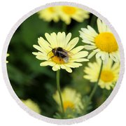 Bee On Yellow Round Beach Towel