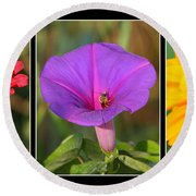 Bee Triptych Round Beach Towel