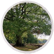 Beech Tree Britain Round Beach Towel