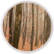 Beech Wood In Autumn Round Beach Towel