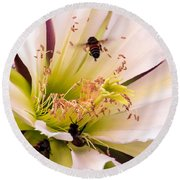Bees In Blossom Round Beach Towel