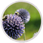 Bees On Globes Round Beach Towel