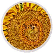 Bees On Sunflower Hdr Round Beach Towel