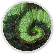 Begonia Leaf 2 Round Beach Towel