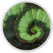Begonia Leaf 2 Round Beach Towel