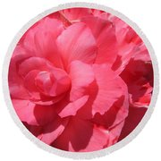Begonia Named Non-stop Pink Round Beach Towel