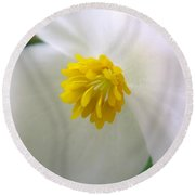 Begonia Round Beach Towel