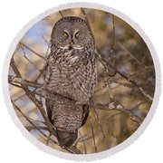 Being Observed Round Beach Towel