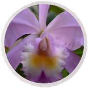 Belle Isle Orchid Round Beach Towel