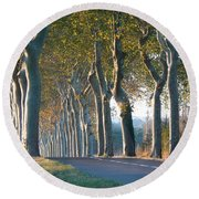 Beloved Plane Trees Round Beach Towel