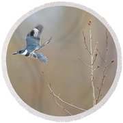 Belted Kingfisher 3 Round Beach Towel