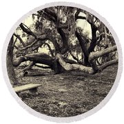 Bench And Trees Bw Round Beach Towel