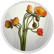 Bendy Poppies Round Beach Towel by Norman Hollands