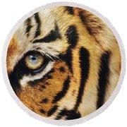 Bengal Tiger Face Round Beach Towel