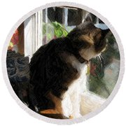 Bentley In The Window Round Beach Towel
