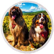 Bernese Mountain Dog And Leonberger Among Wildflowers Round Beach Towel