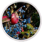 Berries And Red Leaves After The Rain Round Beach Towel
