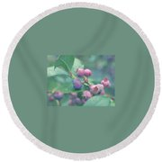Berries For You Round Beach Towel