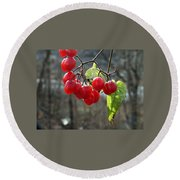 Berries In Winter Round Beach Towel