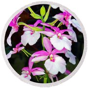 'betty' Orchid Round Beach Towel