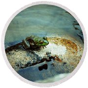 Between A Frog And A Hard Place Round Beach Towel