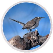 Bewicks Wren Round Beach Towel