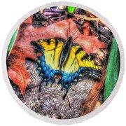 Beyond Chrysalis-tiger Swallowtail Round Beach Towel