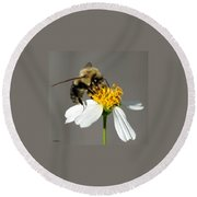 Big Bee Round Beach Towel