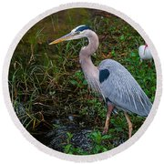 Big Blue And The Ibis Round Beach Towel