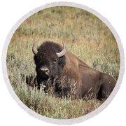 Big Buff - Bison - Buffalo - Yellowstone National Park - Wyoming Round Beach Towel