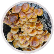 Big Mushrooms Family Round Beach Towel