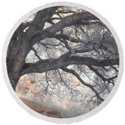 Big Sur Oak Round Beach Towel