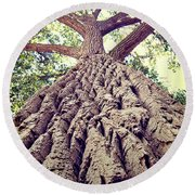 Big Tree Bark Round Beach Towel