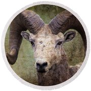 Bighorn Country Round Beach Towel