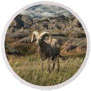 Bighorn Ram In The Badlands Round Beach Towel