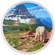 Billy Bearhat Round Beach Towel