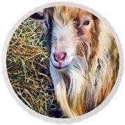 Billy Goat Closeup Round Beach Towel