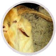 Billy Goat Gruff Round Beach Towel
