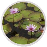 Biltmore Water Lillies Round Beach Towel